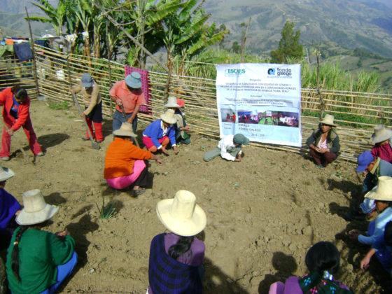 Desenvolvemento de capacidades locais con equidade de xénero e mellora das condicións de vida