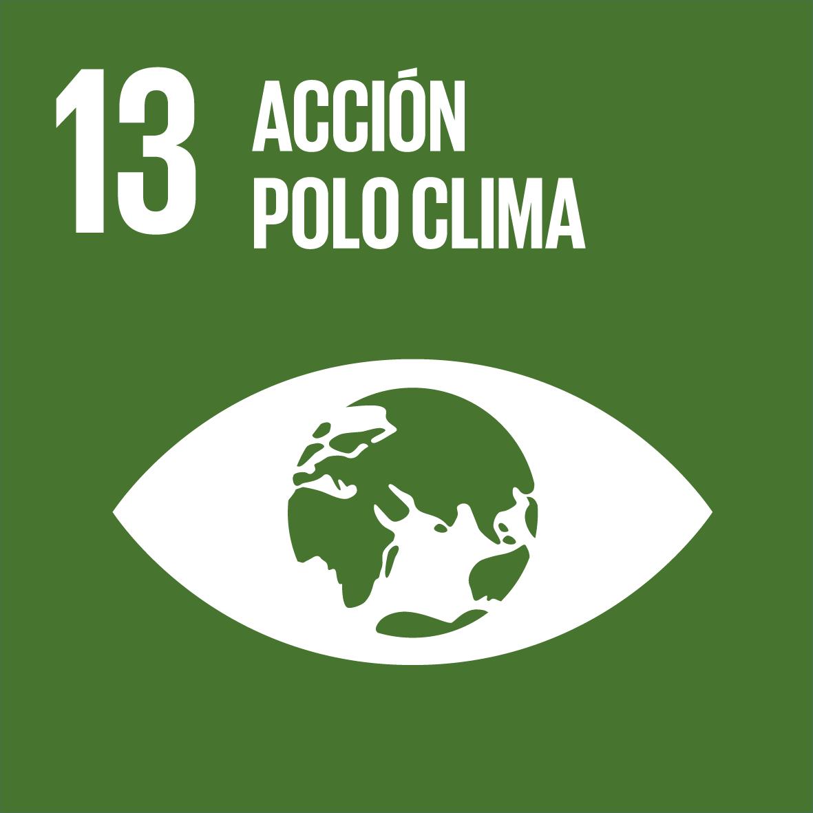 ODS 13: Acción polo clima
