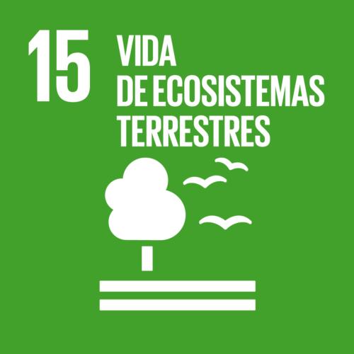 Obxectivos de Desenvolvemento Sostible [15] Vida de ecosistemas terrestres